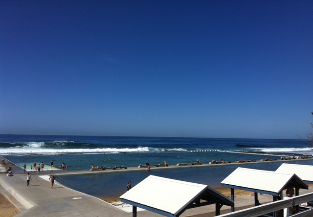 All About Pet Care_Merewether Baths.JPG