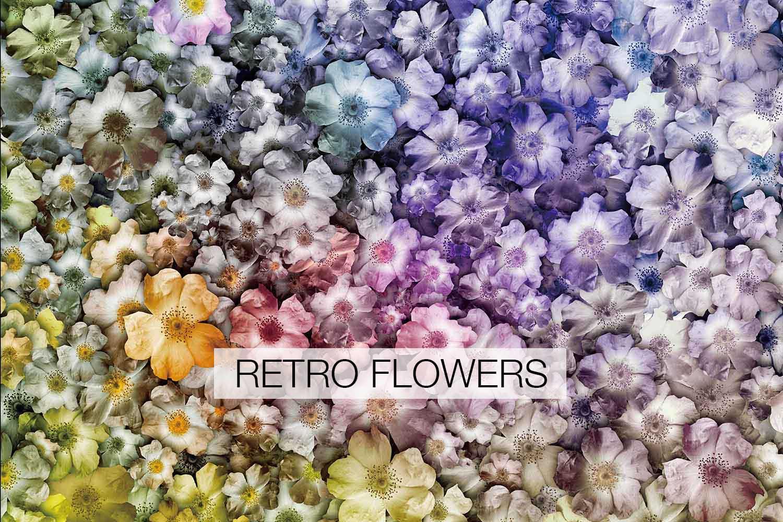 retroflowers.jpg