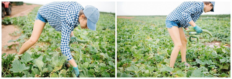 Reimer Farms__Lubbock Texas produce garden_06.jpg