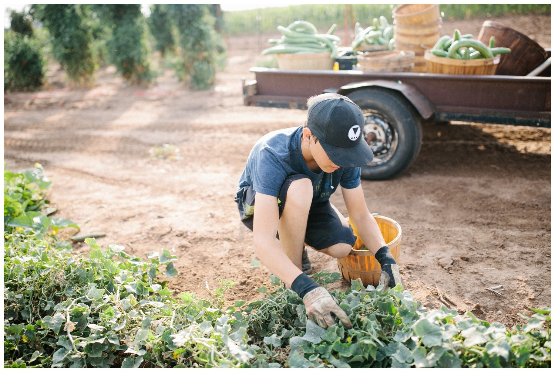 Reimer Farms__Lubbock Texas produce garden_24.jpg