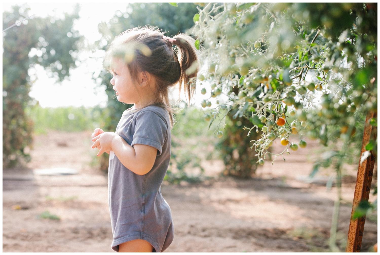 Reimer Farms__Lubbock Texas produce garden_40.jpg
