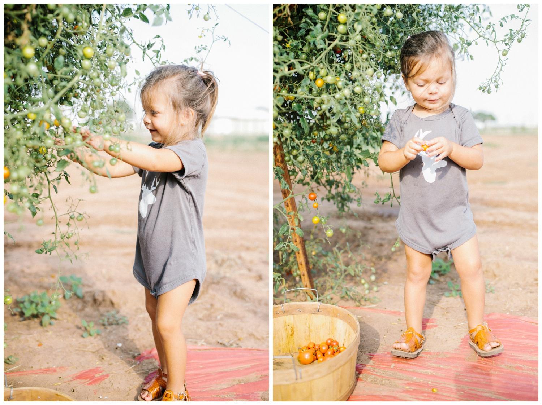 Reimer Farms__Lubbock Texas produce garden_41.jpg