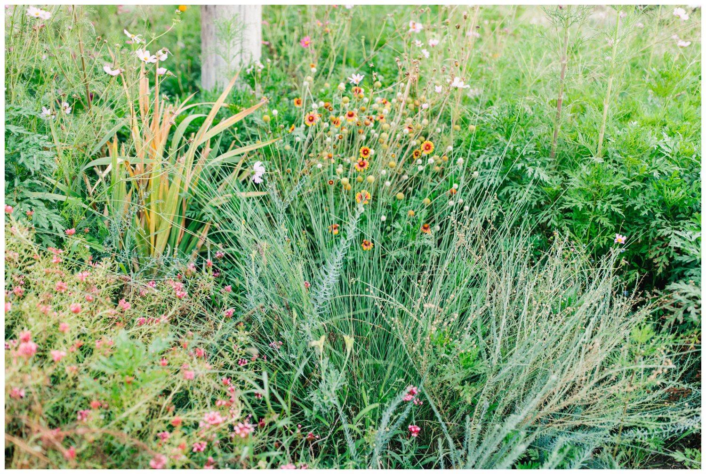 Kamie_Lubbock arboretum bridal portraits_15.jpg