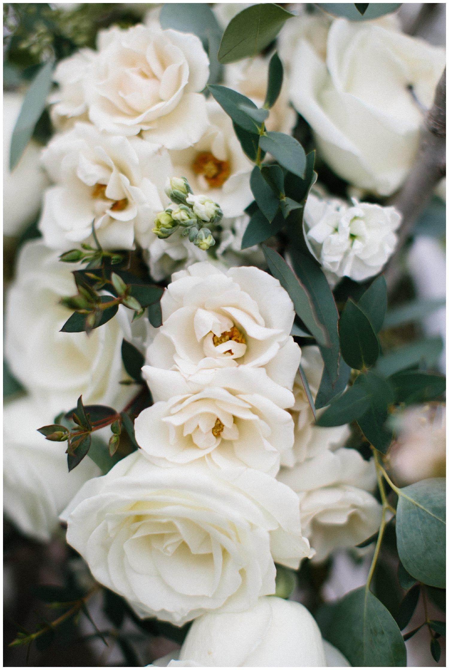 minimal timeless lubbock texas bridal portraits_20.jpg