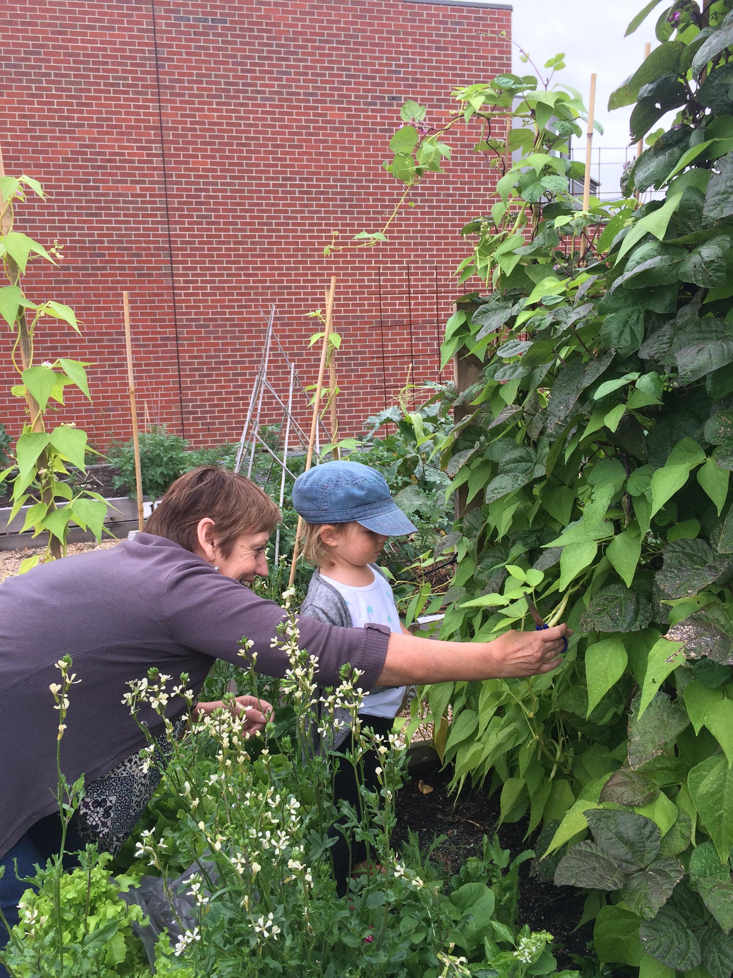 Sue Tale and grand daughter Sunni at Maris's community garden plot