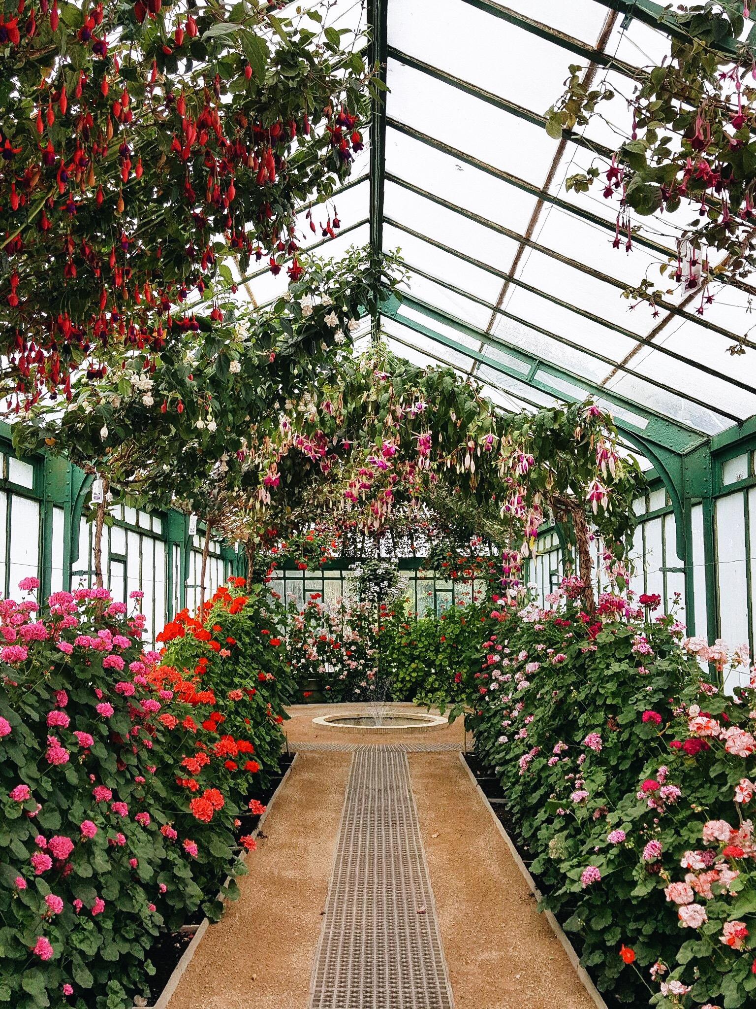 Brussels royal greenhouse garden