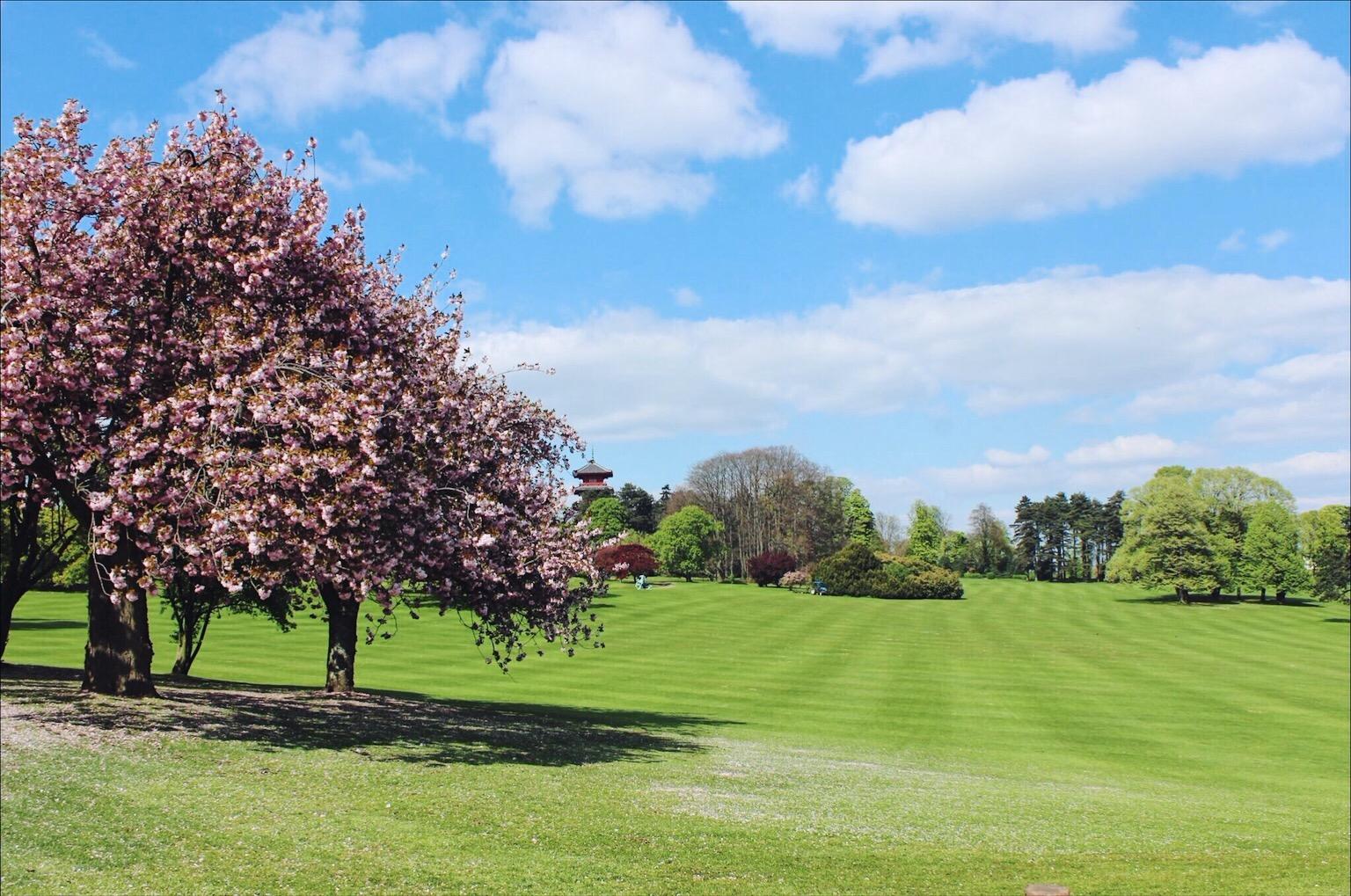 Royal gardens brussels