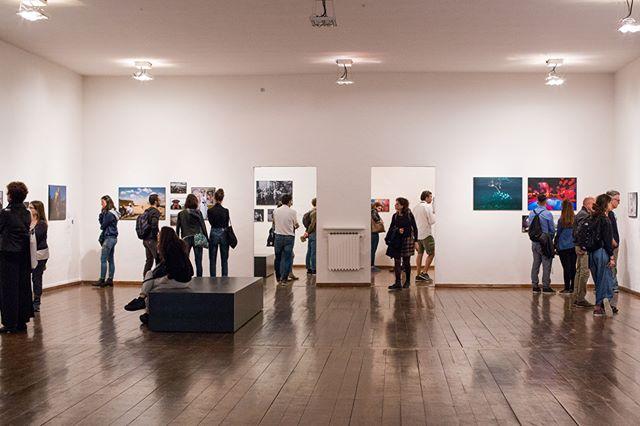 🌻#FERRARA🌻 Grazie a tutte le persone che in questi primi giorni hanno visitato il @worldpressphotoferrara durante il #festival di @internazionale! Siete stai davvero tantissimi e vi ringraziamo uno per uno! Vi ricordiamo che la #mostra è visitabile fino al 3 novembre al PAC-Padiglione d'Arte Contemporanea📍 ph. @fernandarochaphotographer . . . @worldpressphoto #wpp #wpph2019 #intfe2019 #italy #fast #eni @10bphotography @comuneferrara #ferraraarte #exhibition #photography #photojournalism #professionalphotography #stories #people #prize #winners #contest #photocontest #internazionale #worldcontest #bigissues