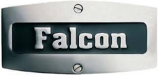 Falcon Logo.jpg