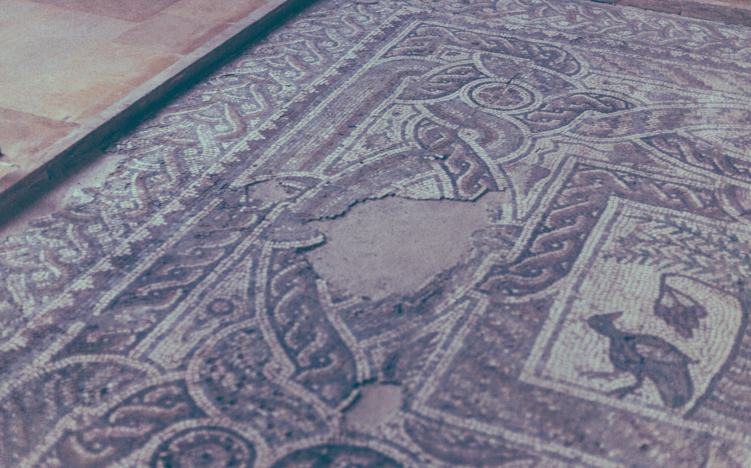 The National Museum is one of the best in the world, with entire mosaics from Byblos.