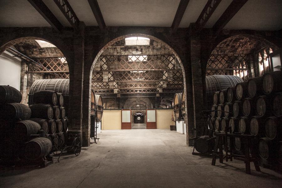 codorniu+winery+barcelona+on+thisissheena.com-6.jpg