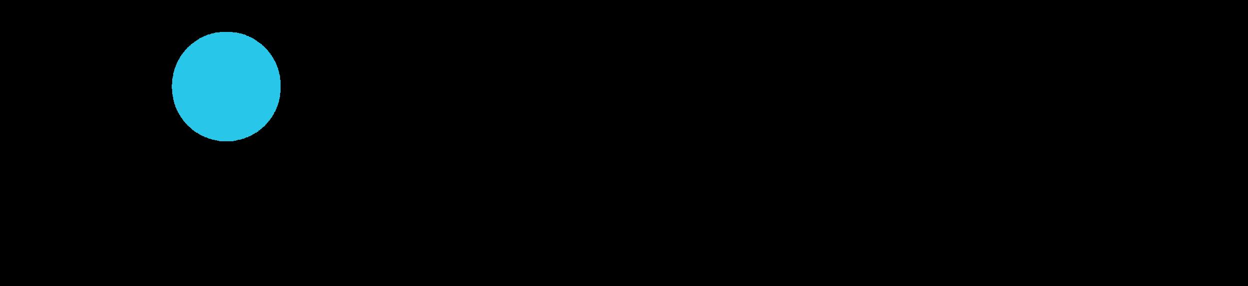 WS Text Logo_Black Color (002).png