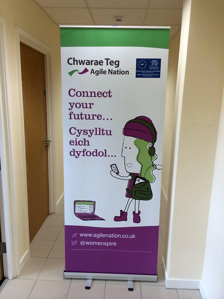 chwarae-teg-banners.jpg