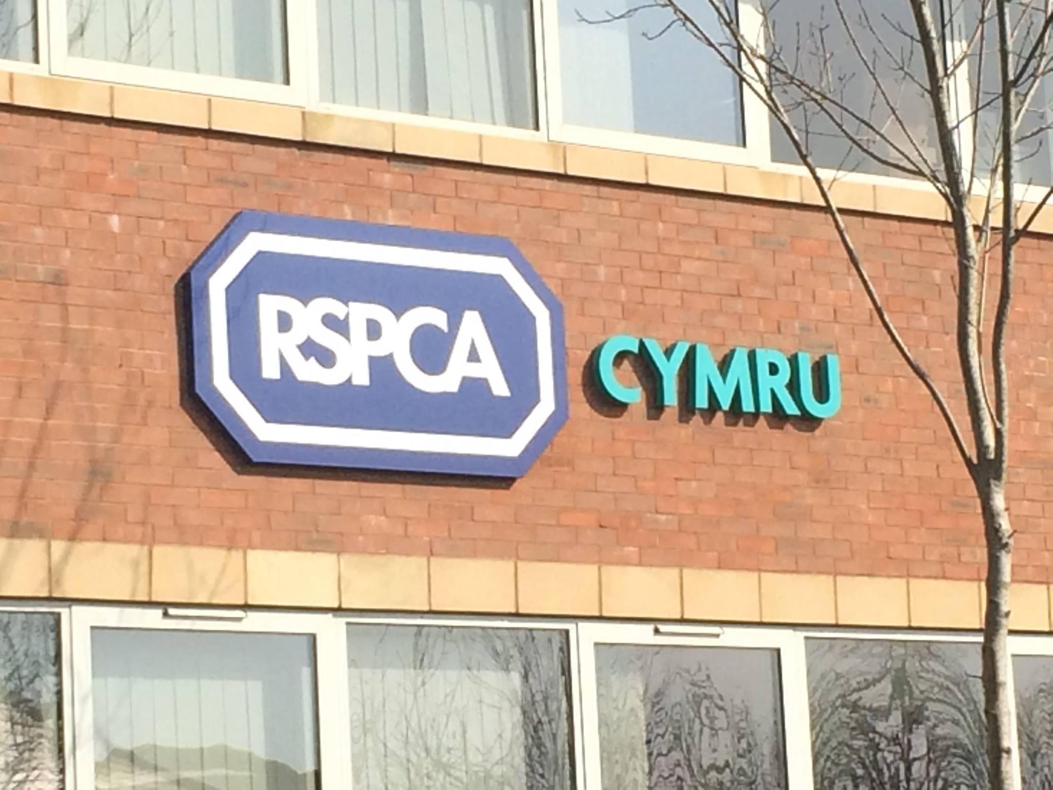 RSPCA-cymru-exterior-sign.jpg