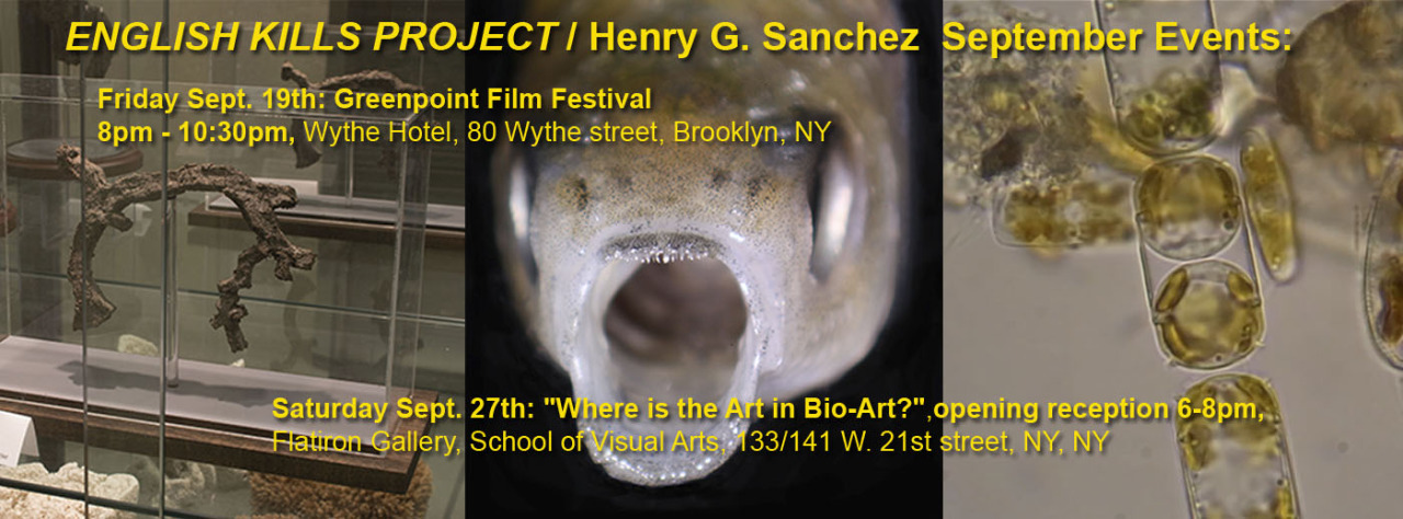 """Dewey Thompson and Jens Rasmussen curate a grouping of films for the Greenpoint Film Festival revolving around the necessity of the North Brooklyn Boat Club waterway, including work from Art Practice Alumni Henry Sanchez  (MFA AP14).   Henry will also have work in the exhibition """"Where is the Art in Bio-Art?"""" in the School of Visual Arts Flatiron Gallery"""