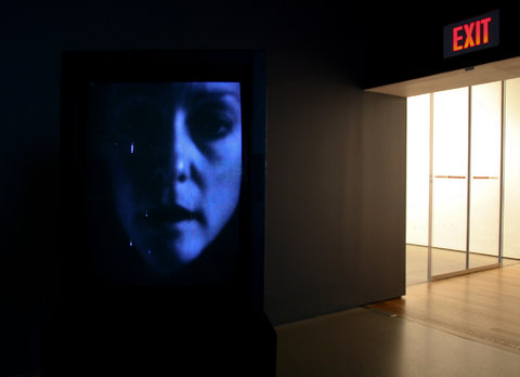 Joan Jonas  (AP Mentor)  will represent the United States  at the 2015 Venice Biennale.