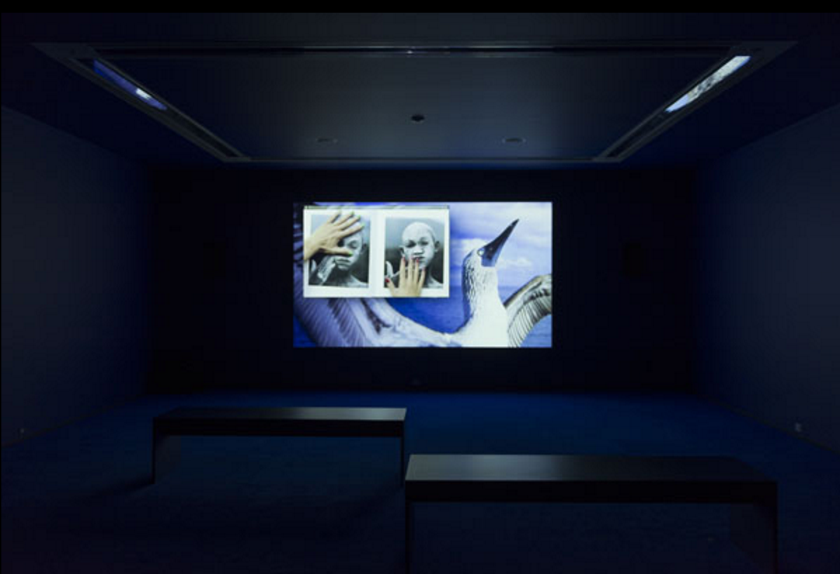 Installation view: MCA Screen: Camille Henrot, Museum of Contemporary Art Chicago, September 3 – December 18, 2016. Photo: Nathan Keay. © MCA Chicago.