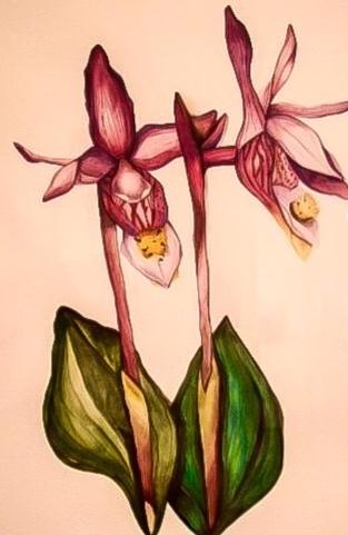 Created by SASLLC artist and owner Samantha Silvas.