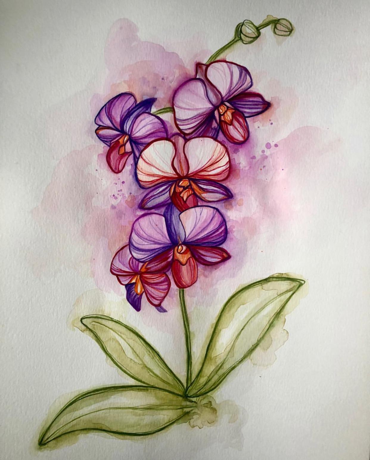 Created by SASLLC artist Dawn Pogany