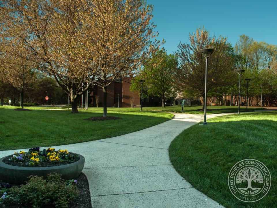 campus.14.jpg