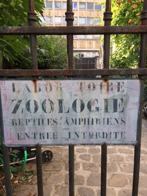 the Typography at the city zoo