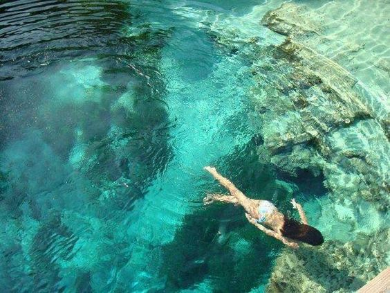 Florida's hidden gem. Come swim, snorkel, canoe, or scuba dive in the crystal clear spring water.During the winter months, hundreds of manatees call this water hole home and can be viewed from the spring's overlooks.