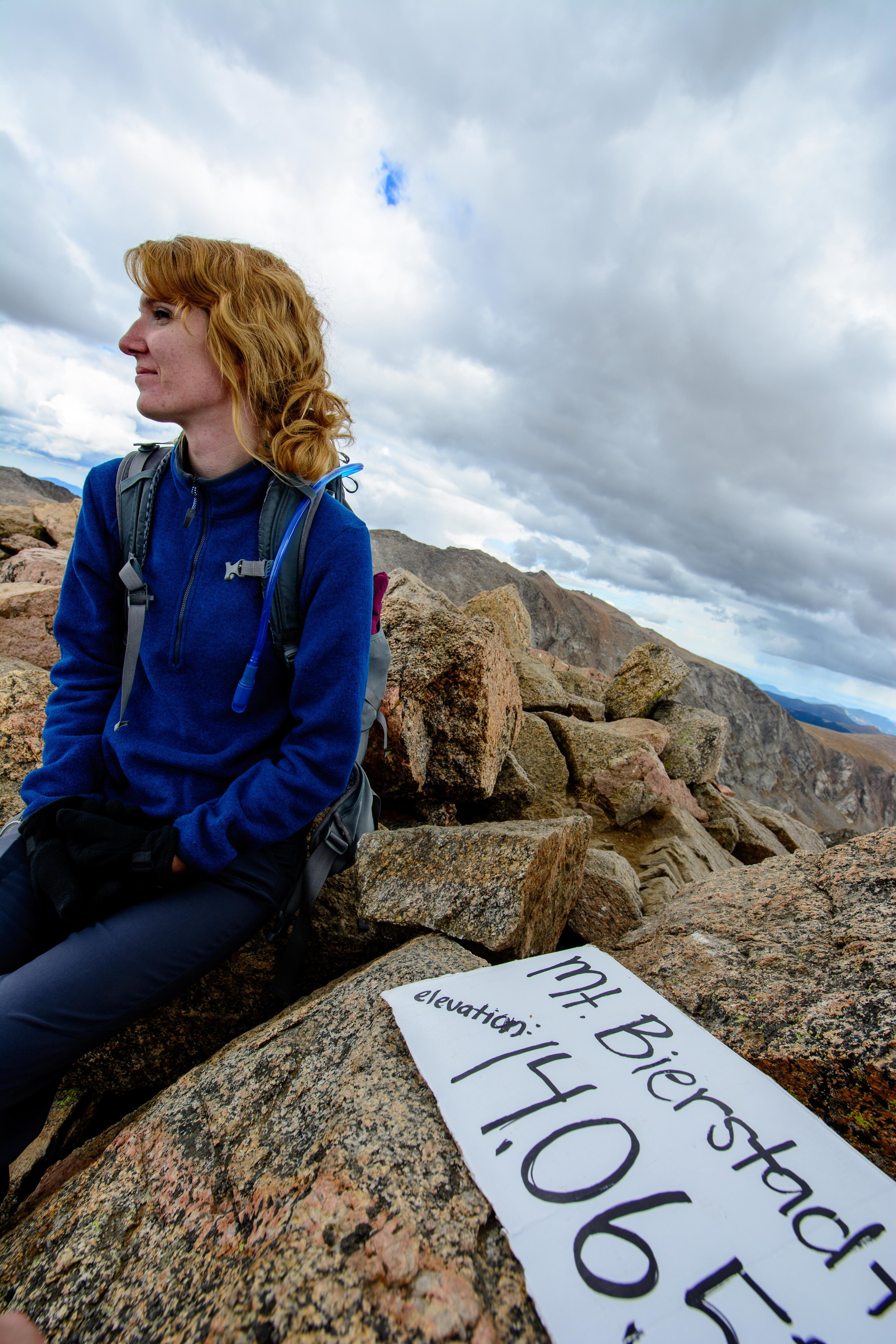 Bierstadt - Summit Life
