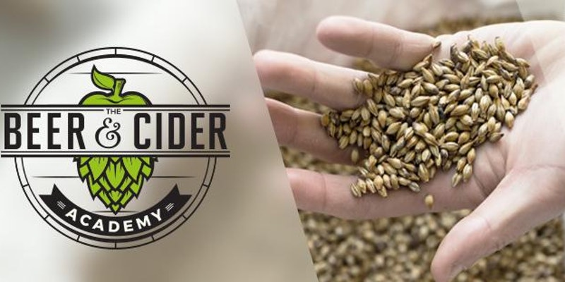 Beer Foundation Course - Learn about how beer is made, its ingredients and how they impact on flavour.