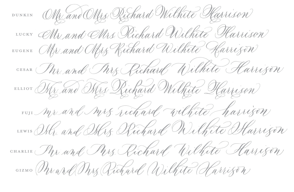 Wedding Envelope Handwritten Calligraphy Calligrapher