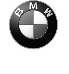 BMW_Module_bw.png