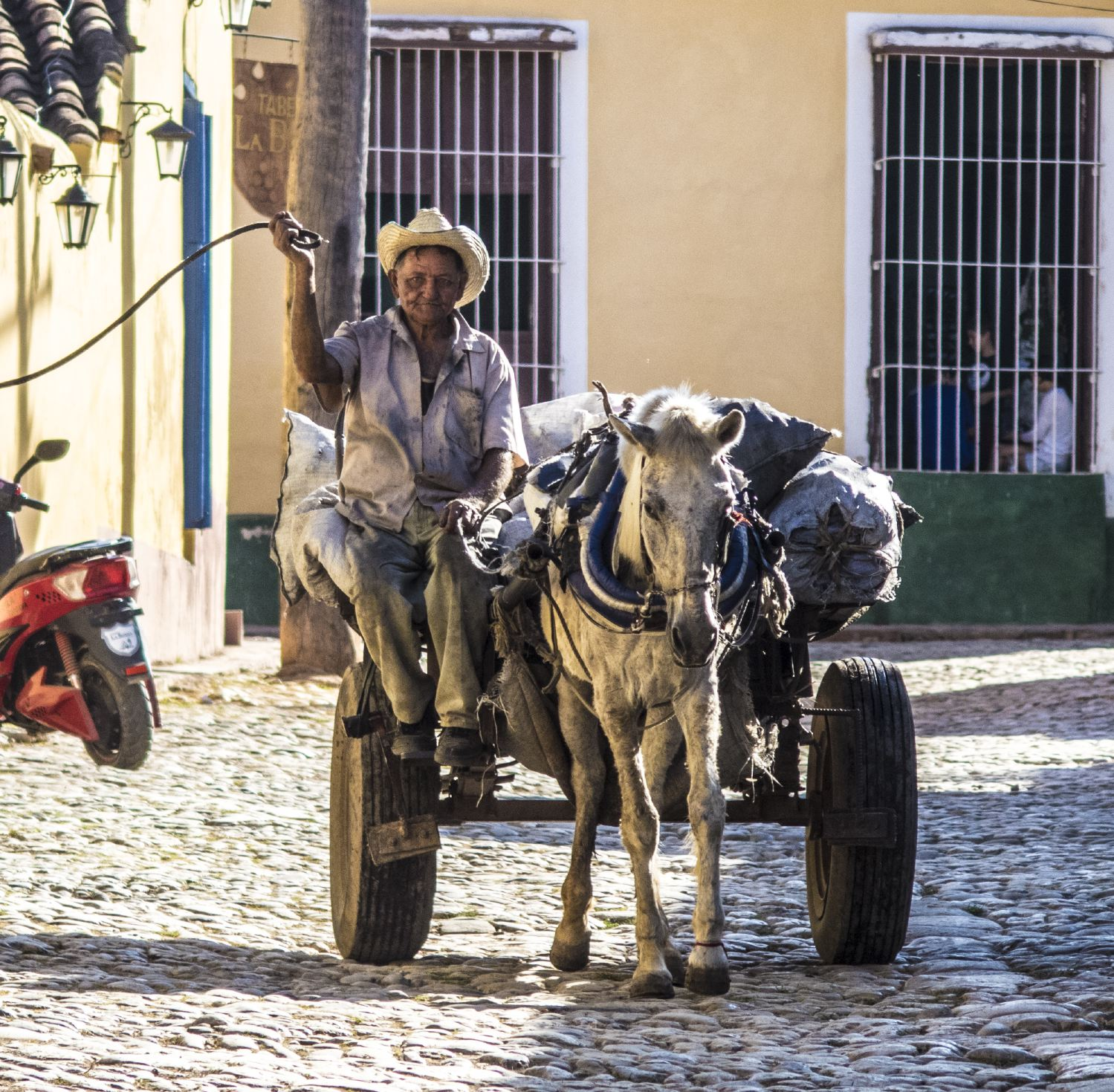 horse-carriage-cuba-michael-benabib-travel-photo.JPG