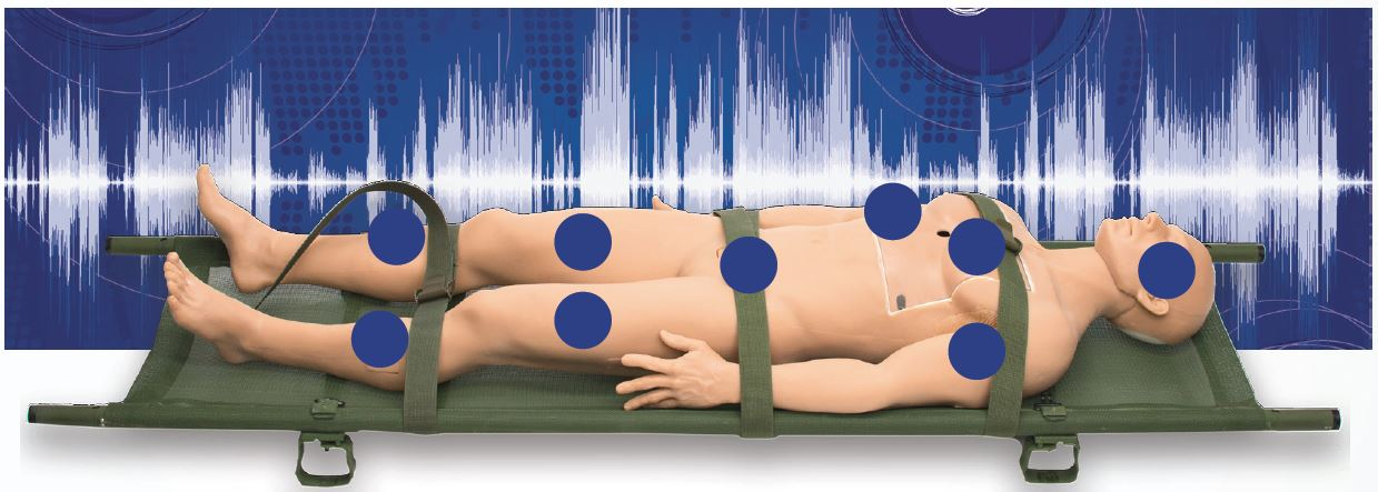 The Instrumented Supine Manikin for vibration (ISMv)