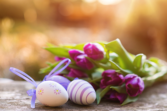 graphicstock-colorful-easter-eggs-and-beautiful-spring-flowers-laid-on-a-floor_H0ek6wabb.jpg