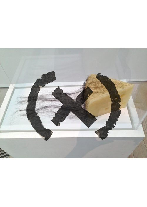 COPY    Long Haired Cheese   Dagmar Daley,2016  Roof beeswax, Human hair, Plexiglass  size roughly