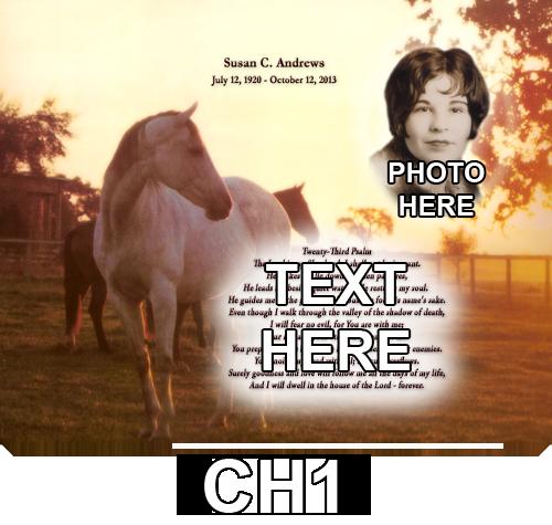 CH1+copy+-+Copy.png