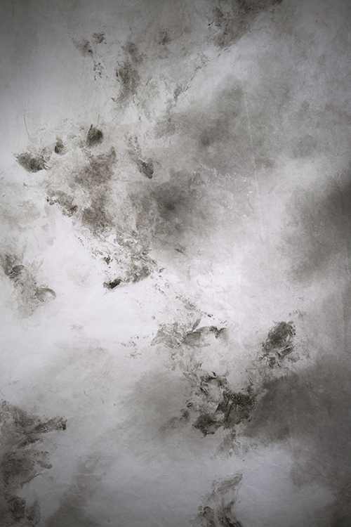 Dark North (Detail)