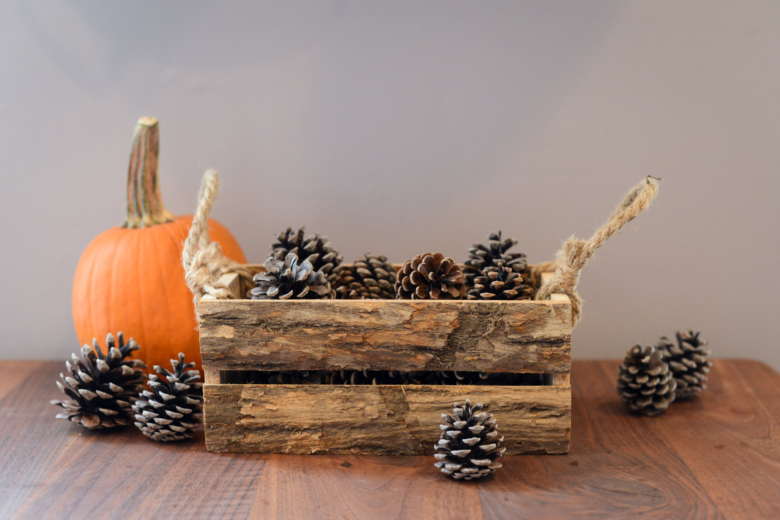 Rustic wooden box for fall