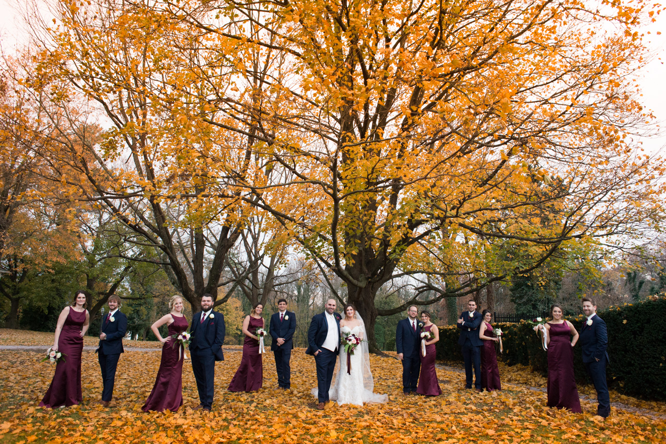 Wedding Party portrait under fall tree