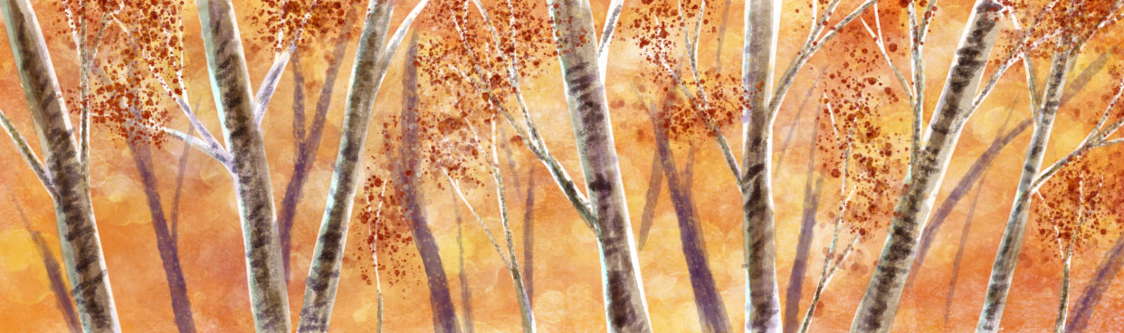 Autumn's fiery grip enfolds the forest, by Amanda Spaid.