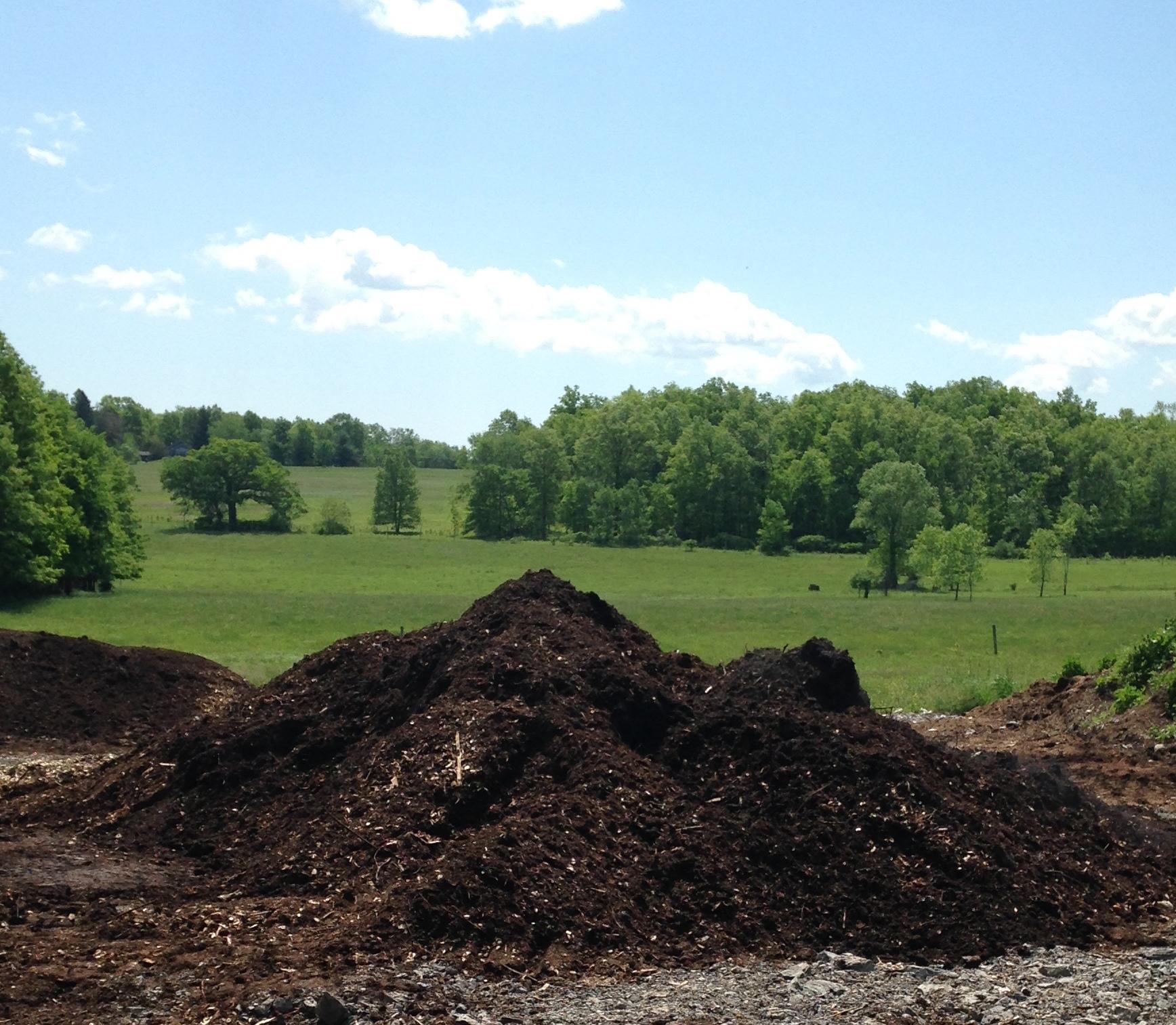 Compost Piles.jpg