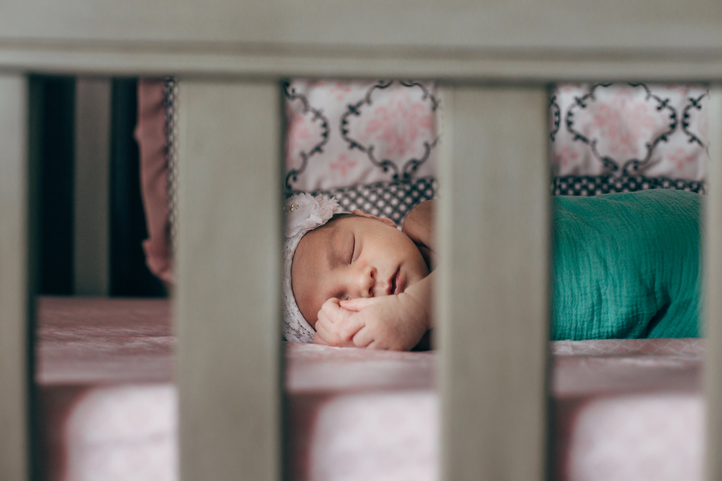 houston family photographer-5604.jpg
