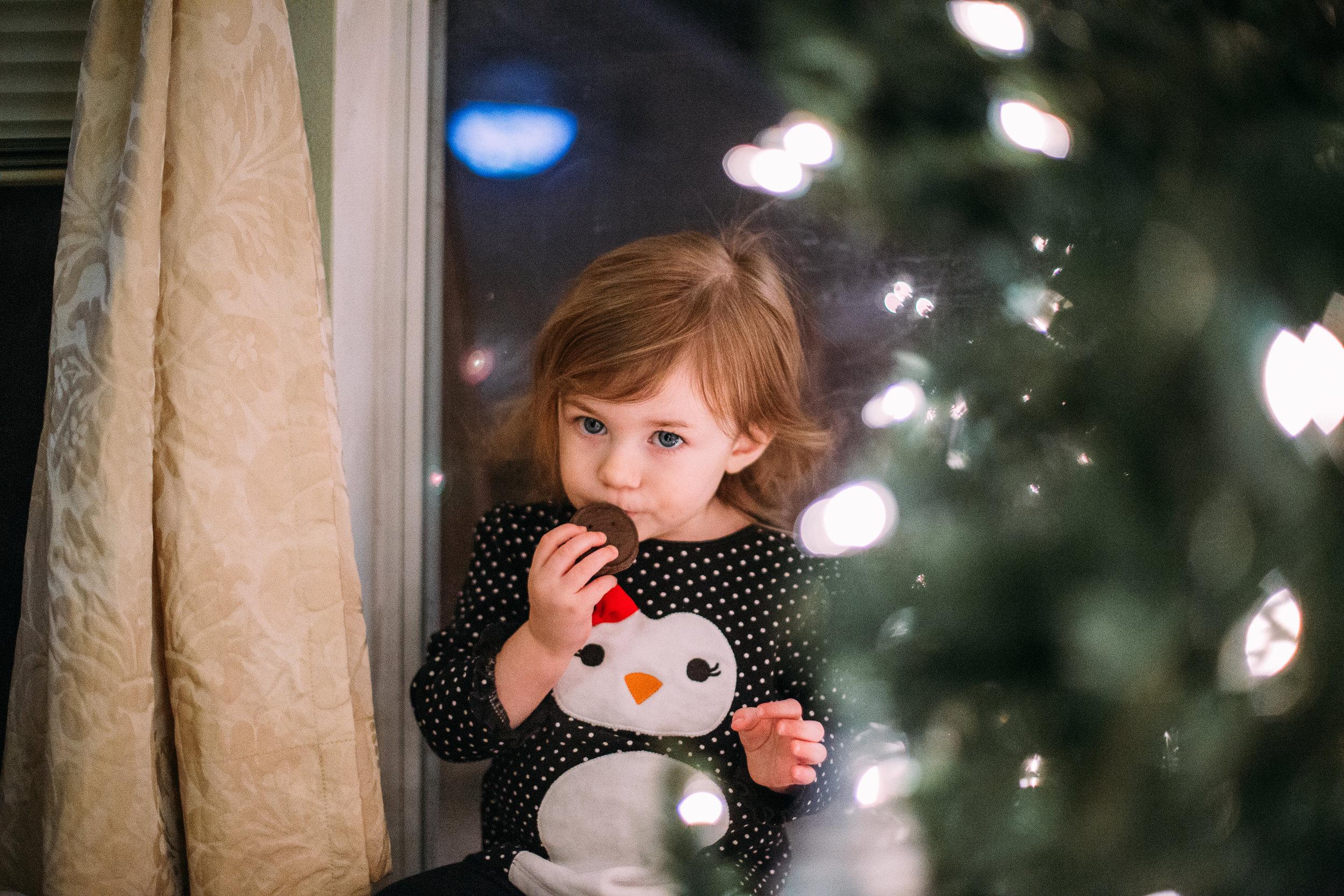 Christmas Family Photos Houston-9498.jpg