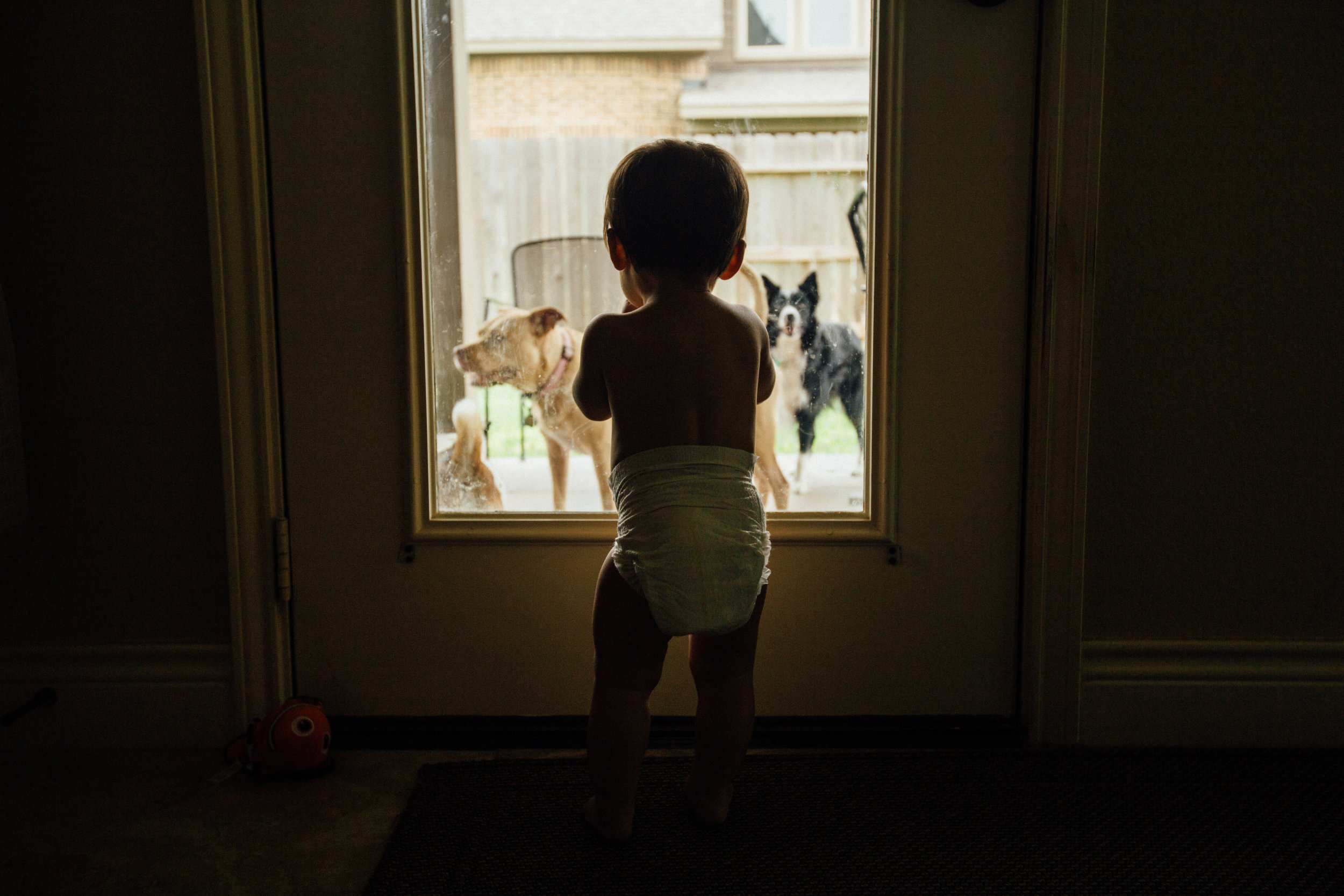 family-photographer-houston-9931.jpg
