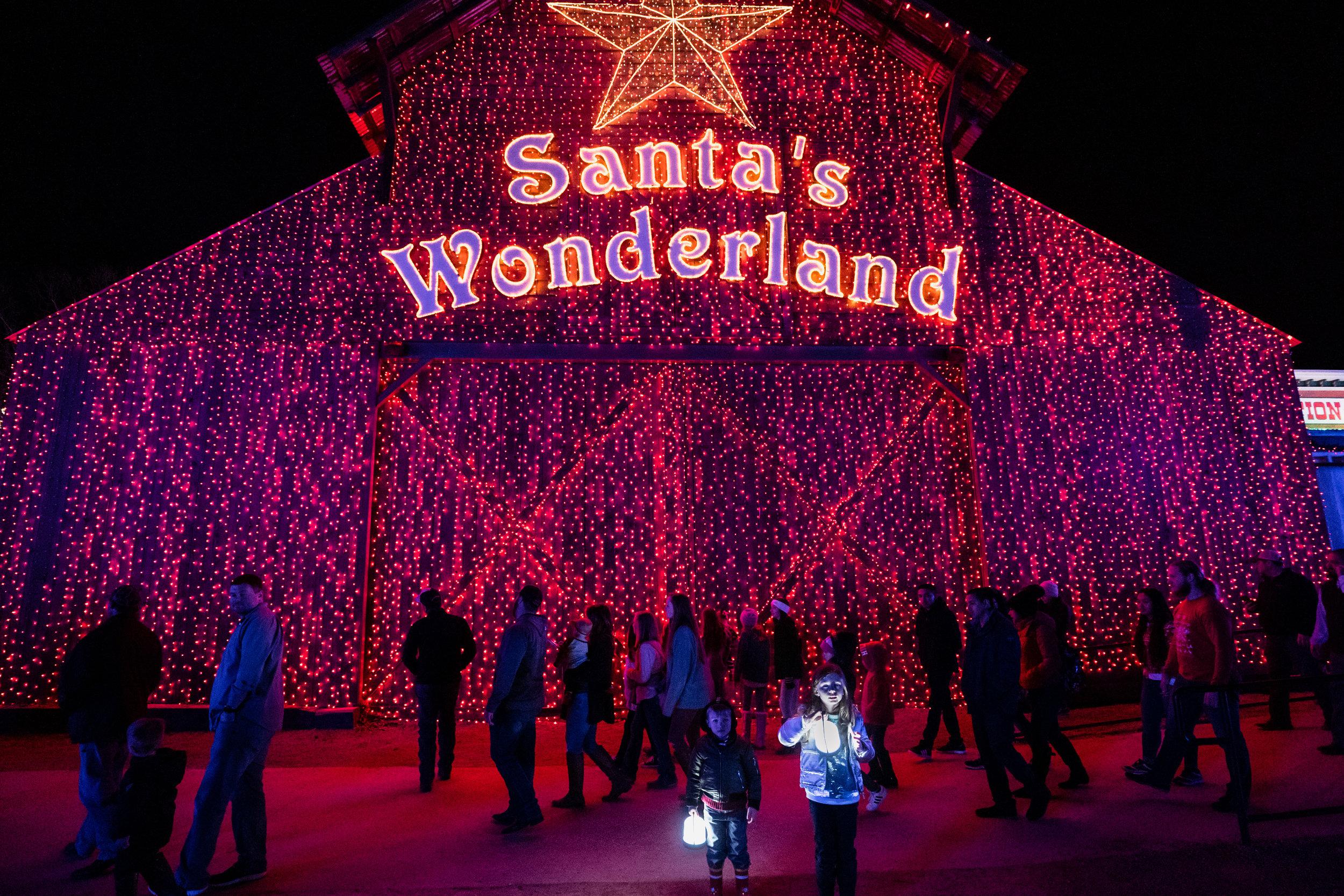 Children enjoying Christmas Lights-3.jpg