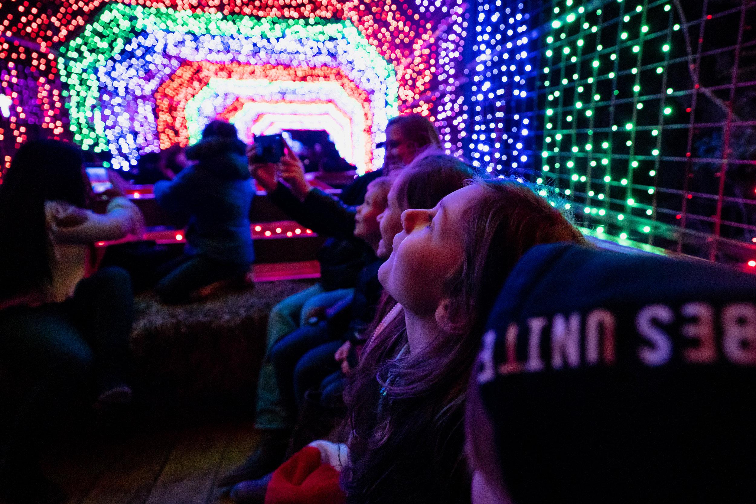 Children enjoying Christmas Lights-7.jpg