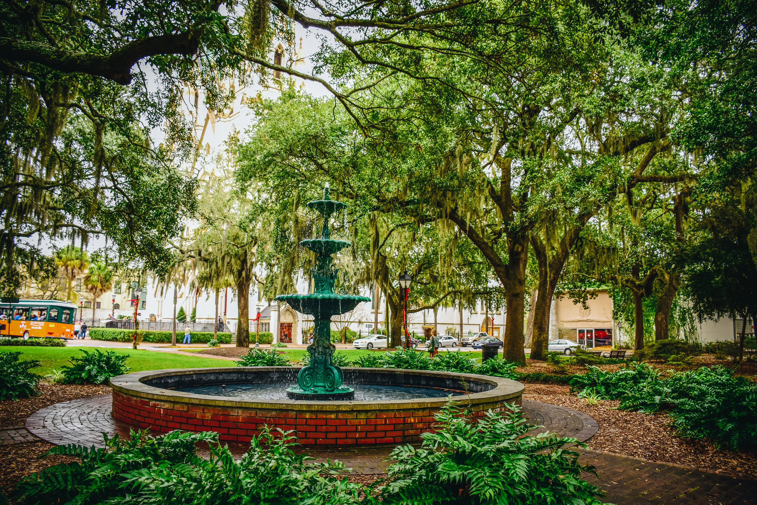 Savannah's beautiful parks with Spanish moss everywhere.