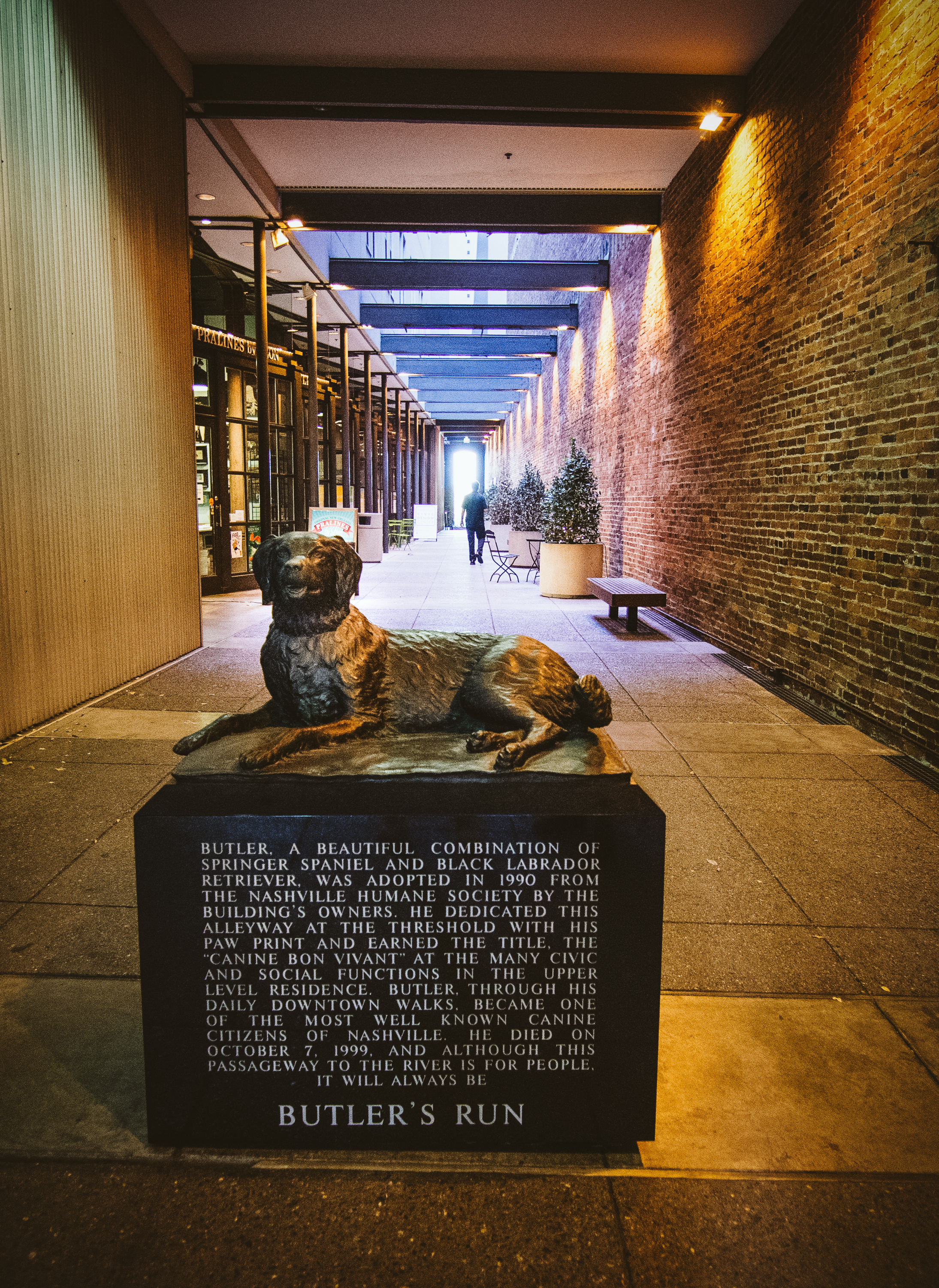 Butler's Run is a passageway in downtown Nashville named after a dog named Butler in order to make sure that, no matter the development, a path to the river would always exist for people (and animals).