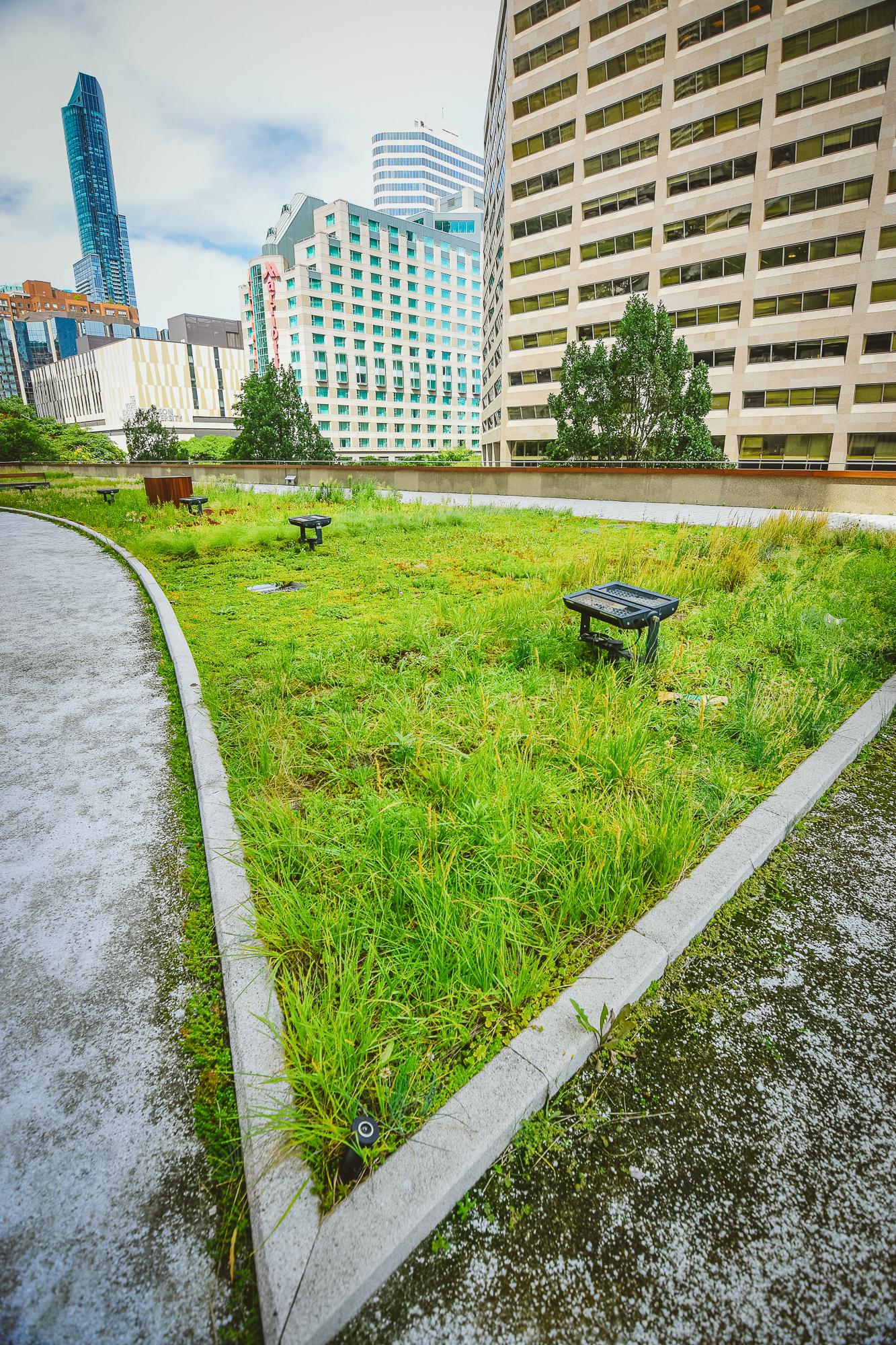 gardens-0685.jpg