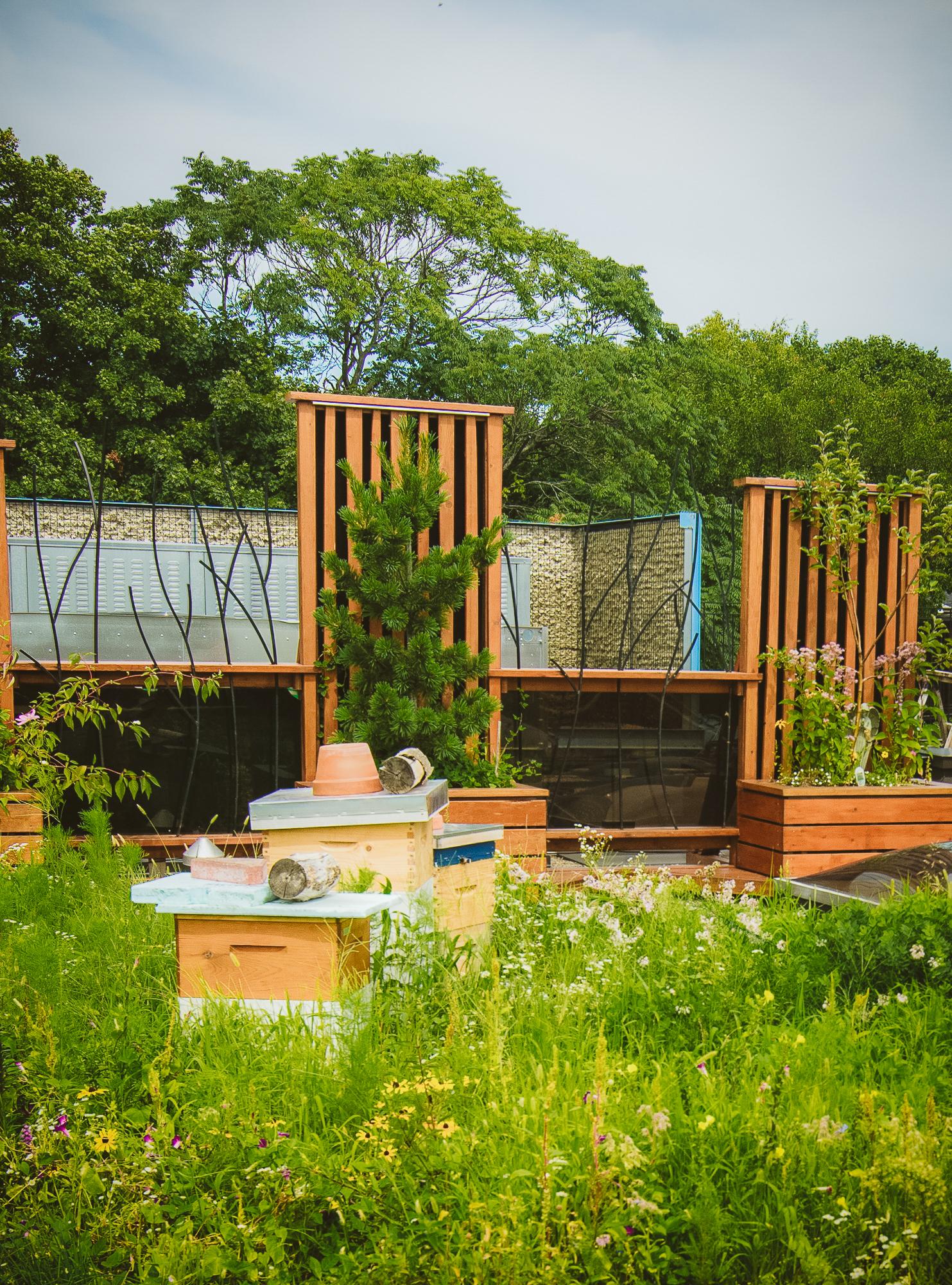 gardens-0628.jpg
