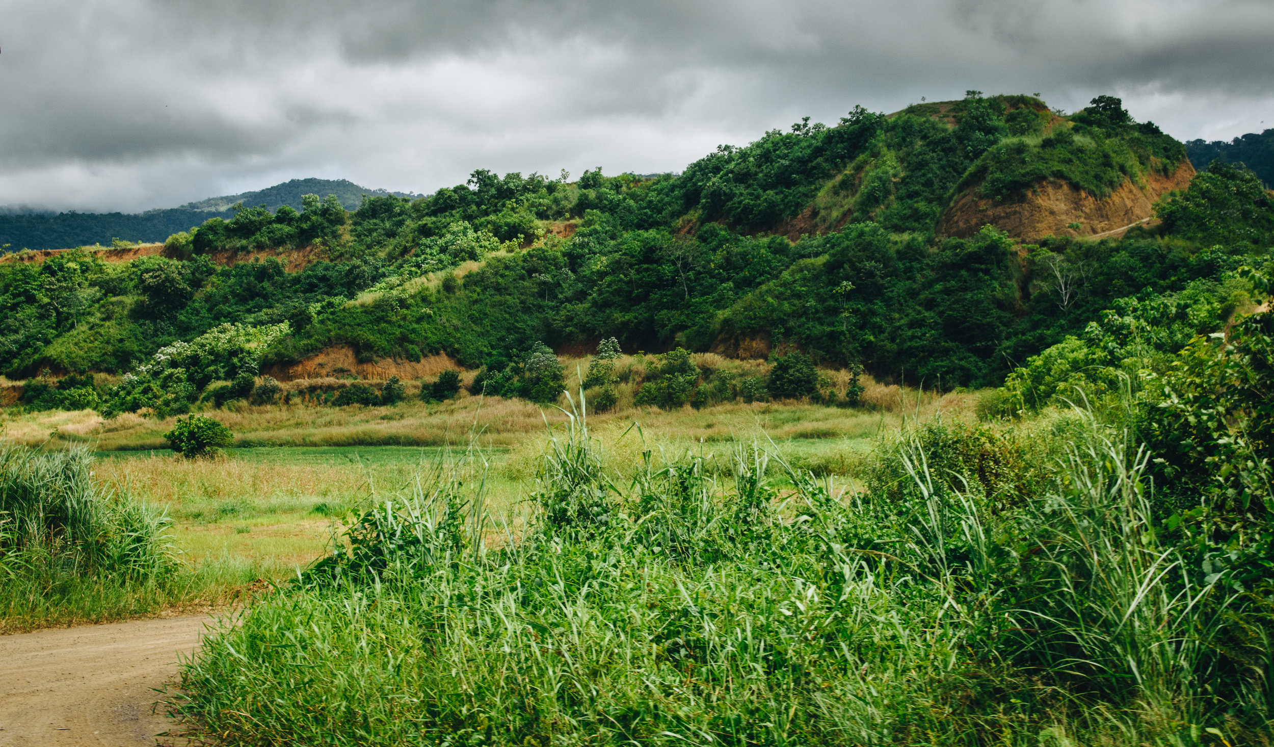 The rural landscape of Guanacaste is so lush but arid as well. How interesting.